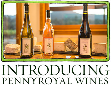 Introducing Pennyroyal Wines